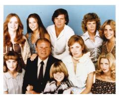 La famiglia Bradford serie televisiva completa anni 70 - Dick Van Patten